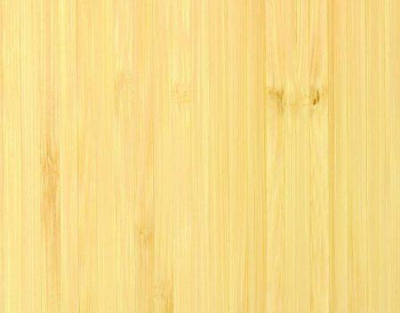 20120121-03_D_HR_SPN-BambooElite