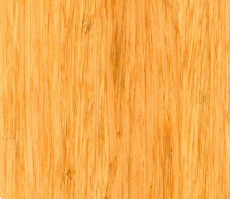Bambooelite
